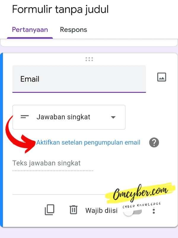 kolom email google formulir
